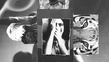 Quem é a mulher Psicotrópica?